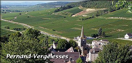 ブルゴーニュ・ワイン産地:Côte...